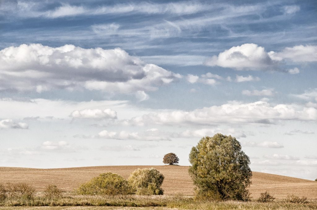 Der Kappenberg bei Hohenlandin (Foto: Jens Wiese)